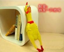 供应减压玩具绝望的战斗鸡惨叫鸡/整蛊