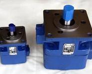 双联叶片泵生产厂家图片