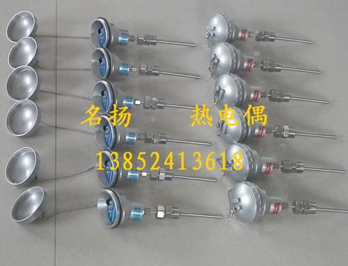 供应WZPKB-331铠装热电阻