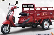 供应福田五星110ZY-2(ZB)  三轮老年车 正三轮摩托    图片