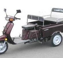 供应大龙DL100ZK-C  正三轮摩托车 三轮车图片