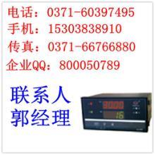 供应多回路巡检测量控制仪