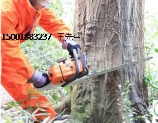日本小松G4100油锯、小松G4100油锯厂家、小松16寸链锯
