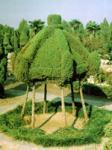 园林植物与观赏园艺、风景园林规划与设计