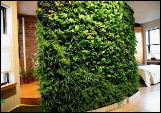 东莞/东莞办公室绿化施工、绿墙施工、室内植物搭配施工、盆景制作...