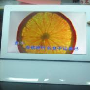 全国首销苹果版22寸液晶楼宇广告机图片