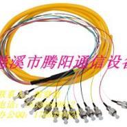 FC12芯单模束状尾纤图片