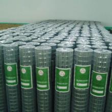 供应镀锌电焊网电焊网片厂家