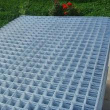供应振动电焊筛网优质电焊网