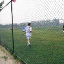 供应 银川勾花护栏网 球场围栏网厂家
