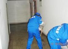 供应濮阳保洁公司专业清洗沙发地毯地板