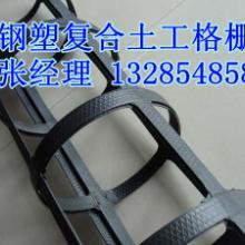 湘潭钢塑土工格栅生产厂家/13285485806