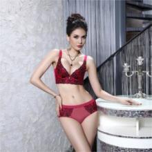 深圳国际品牌内衣排行榜,法曼儿内衣业绩遍及全国