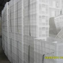 供应塑料地瓜筐