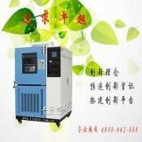 小型高低温箱-上海林频仪器