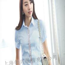 上海供应新款短袖衬衫/衬衫加工定做/火热定制中