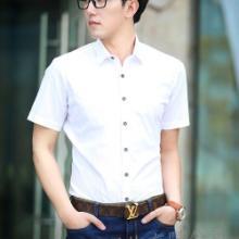 上海订做修身男式衬衫/为各大公司企业及团体定做衬衫