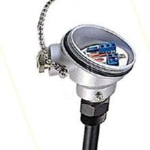 ZTS溫度傳感器(JASON AXE顯示控制隔離變送儀表系列)批發