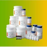 甘氨酸二肽图片