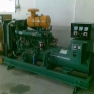 里卡多柴油发电机/柴油发电机组图片