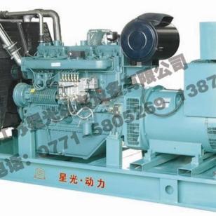 里卡多发电机组南宁销售最新产品图片