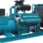 燃气发电机组直列190系列图片
