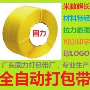 肇庆打包带厂/惠州打包带厂图片