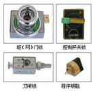 供应五防锁正规生产厂家/LW2开关锁批发