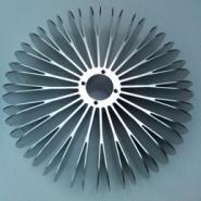 A系列太阳花散热器图片