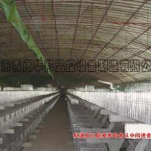 供应养殖设备
