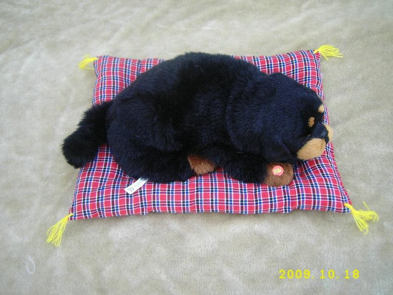 供应玩具玩具猫玩具狗