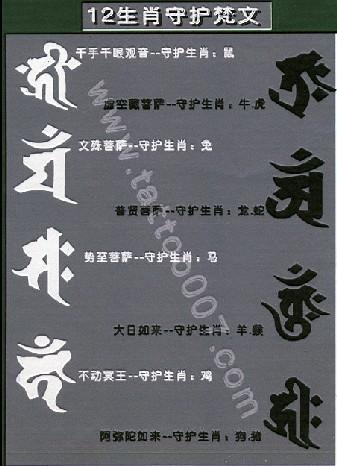 普贤菩萨纹身手稿,普贤菩萨纹身图,龙的守护纹身普贤菩萨,普高清图片