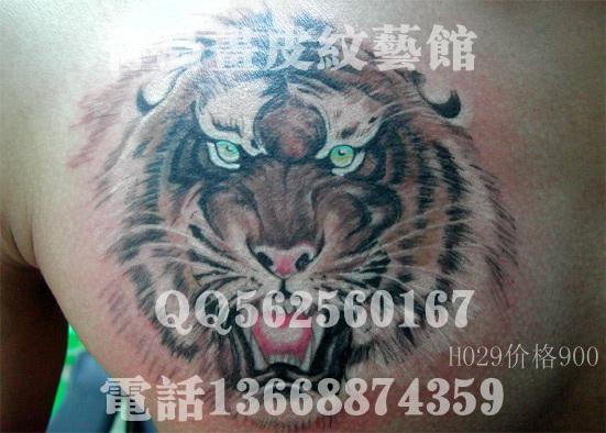 老虎头纹身 老虎头纹身图案 小老虎头纹身图片