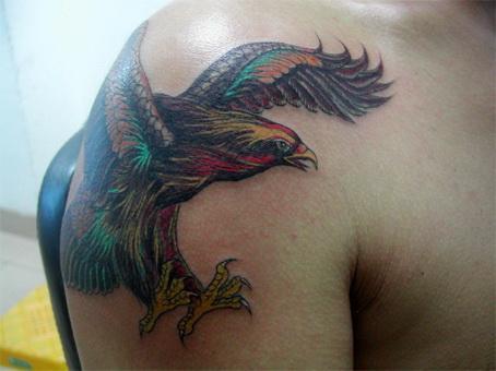 狼头纹身图案猛禽纹身那里猛禽纹好图片
