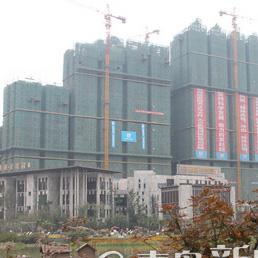 四川建设网图片