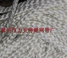 供应引纸绳,进口杜邦丝引纸绳,锦纶引纸绳 造纸机用引纸绳图片