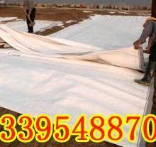 甘肃eva排水板价格固原排水板·银川排水板报价·石嘴山两布一膜批发