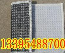 供应阿克苏膨润土防水毯厂家·价格/钠基膨润土防水毯防水垫特价批发
