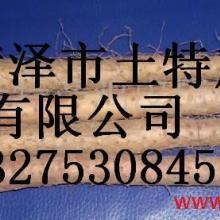 供应批发日本白山药种子批发山药种子