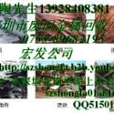 供应惠州回收废旧网线,惠城区收购废旧网线,大亚湾回收废旧电线电缆