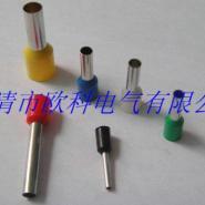 供应南平双线管型端子E25-12