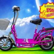 特价电动自行车图片