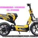 电单车生产厂家图片