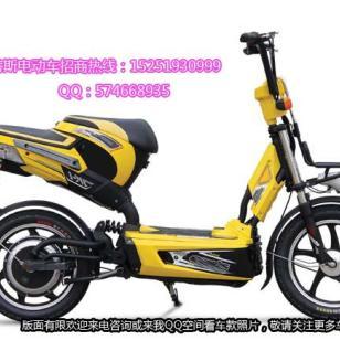 广东电动自行车图片