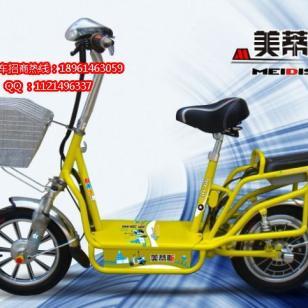 江苏新能源环保电动车图片