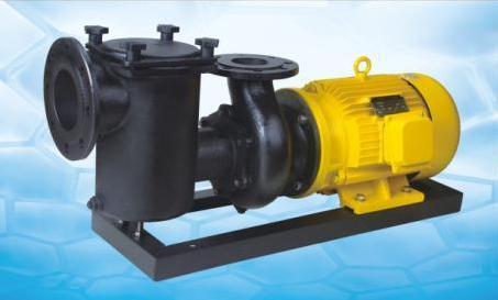 安浦CCPB生铁泵系列铸铁过滤泵泳池过滤水泵温泉水循环铸铁泵