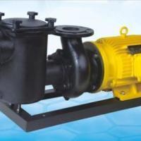 安浦CCPB生铁泵系列铸铁过滤泵