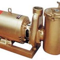安浦BP铜泵系列水处理过滤铜泵泳池过滤设备