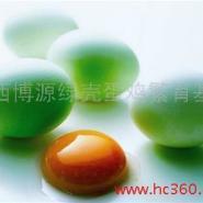 绿壳蛋鸡种蛋图片