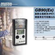 英思科可燃气体检测仪图片
